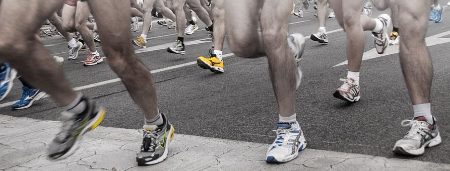 course à pied fevrier 2019 ou marathon perros paimpol 2018