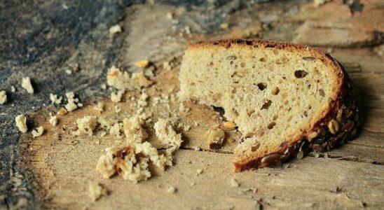 Calories du pain bao, chiffres nutritive et bénéfices pour la santé