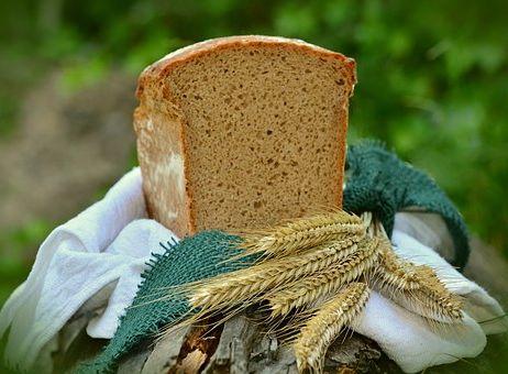 Calories du pain ezekiel, chiffres nutritionnelle et bienfaits pour la santé